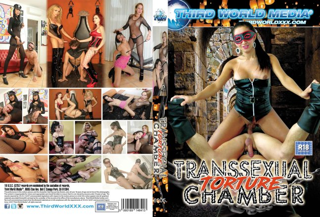 Transsexual Torture Chamber
